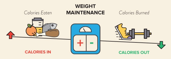 1-Weight-Gain-Maintenance-Loss-Scale-Image