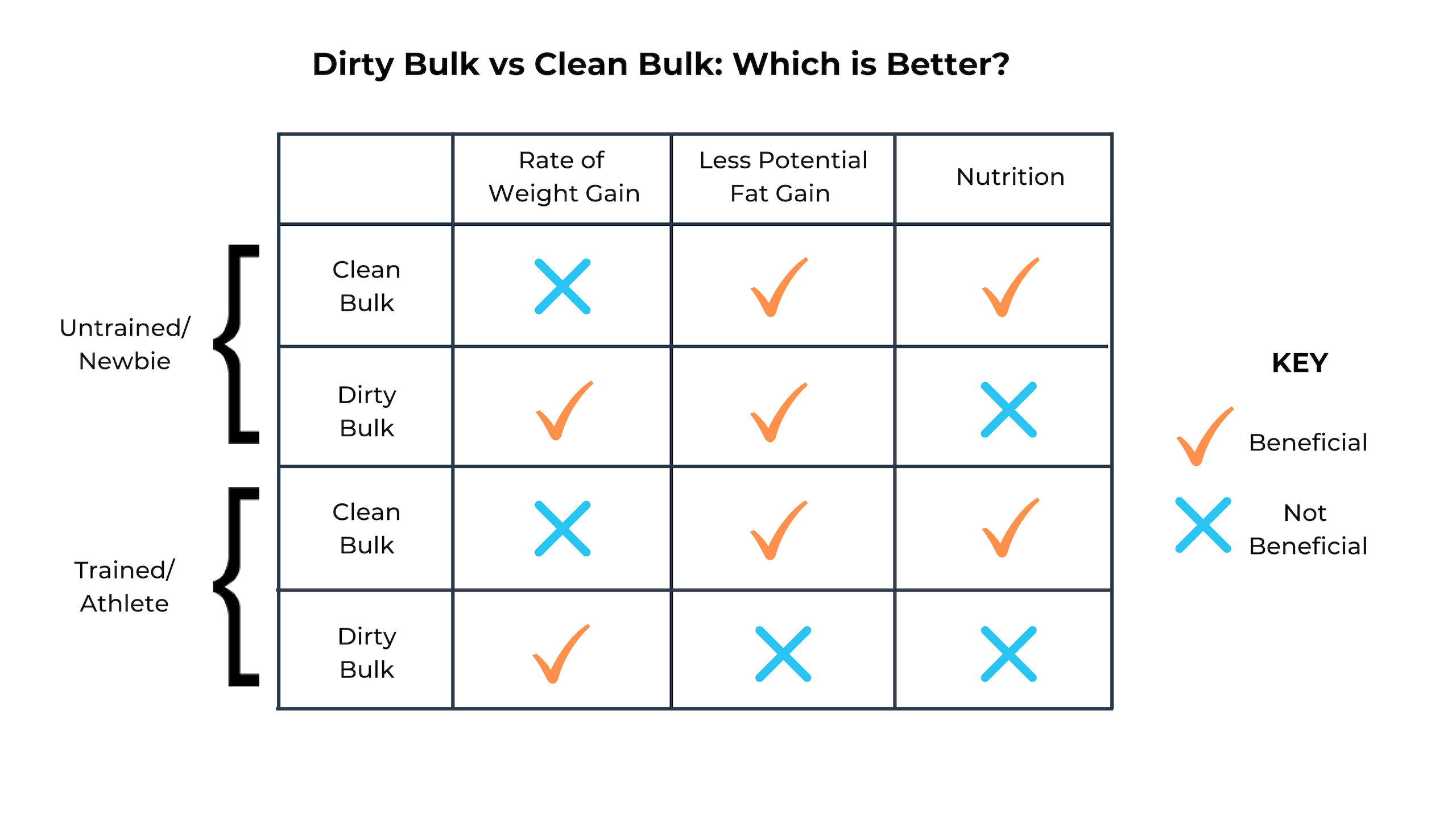Dirty Bulk vs Clean Bulk (1)
