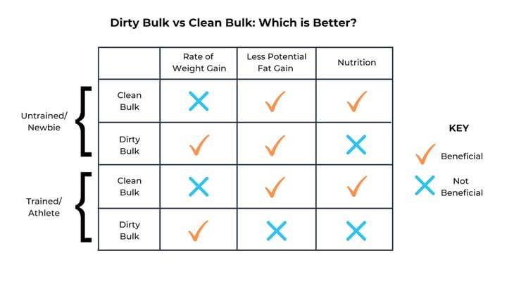 Dirty-Bulk-vs-Clean-Bulk-(1)