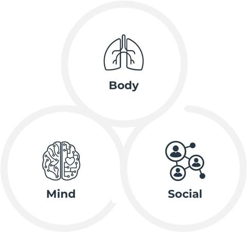 mind-body-social