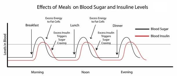 InsulinGraph_3a.jpg
