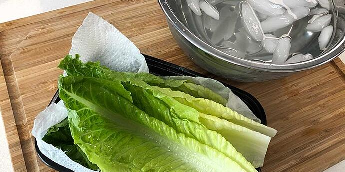 Ice water shocked romaine lettuce leaves drying on paper towels