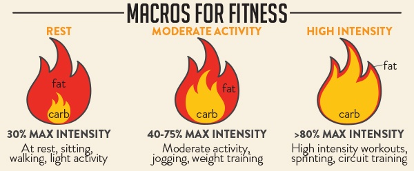 Macros-For-Fitness-Trifecta (1)