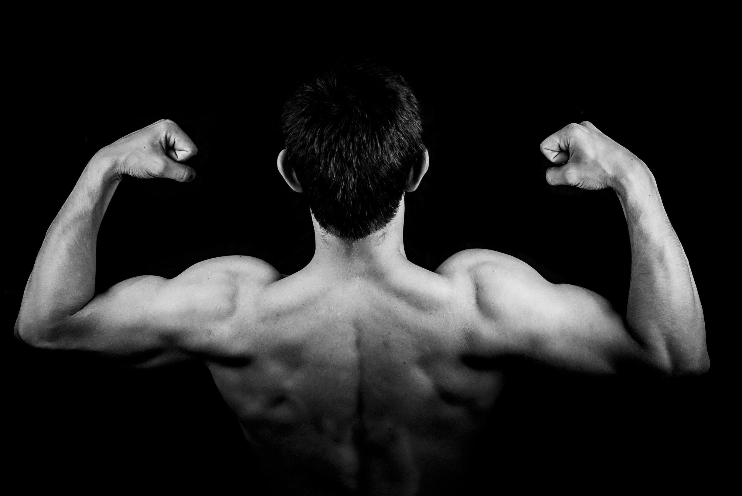 build lean mass