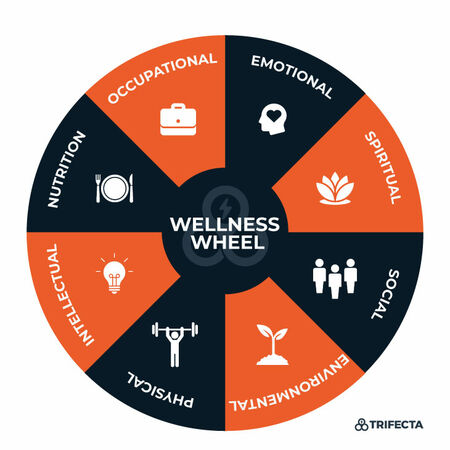 trifecta wellness wheel