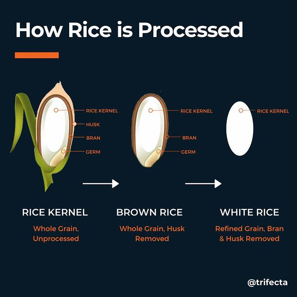 how rice grain is processed