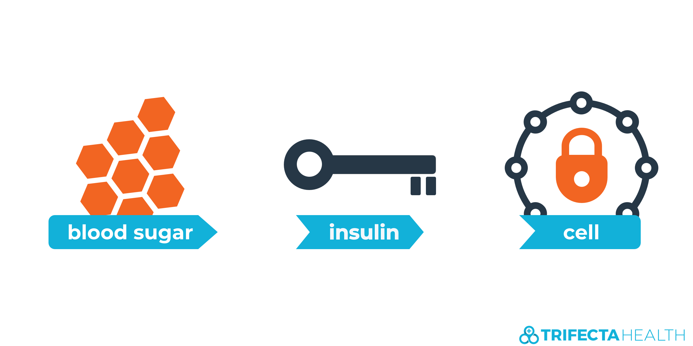 insulin_glucose_diabetes-1