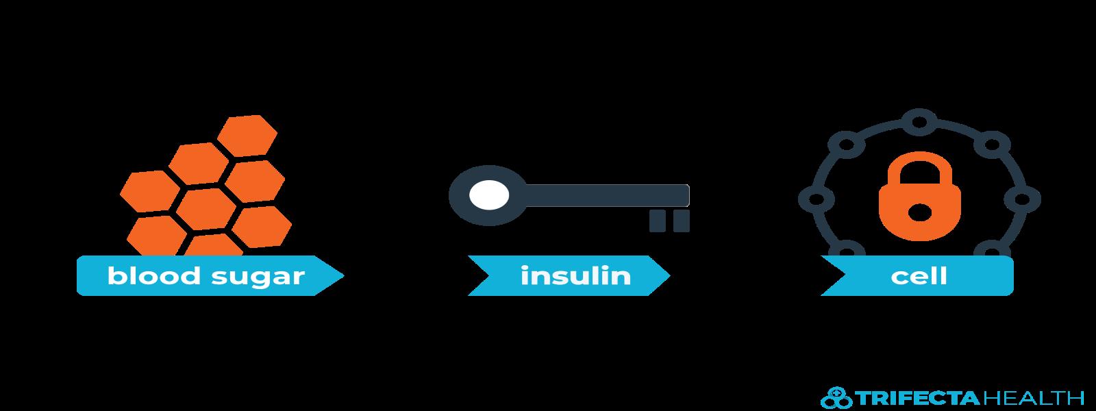 insulin_glucose_diabetes-2