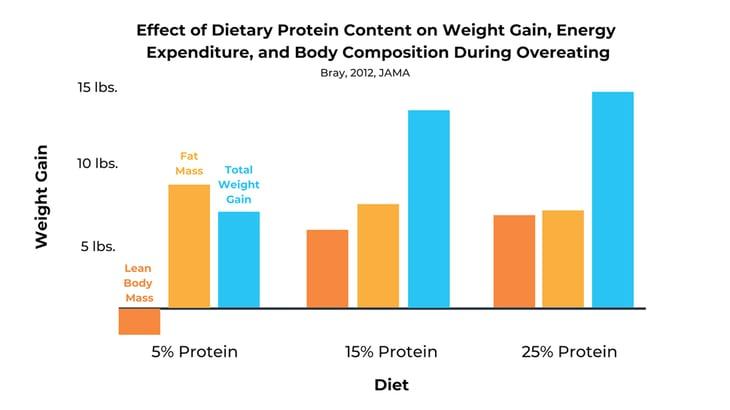 protein-weight-gain-bulking-diet
