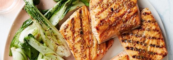 salmon_