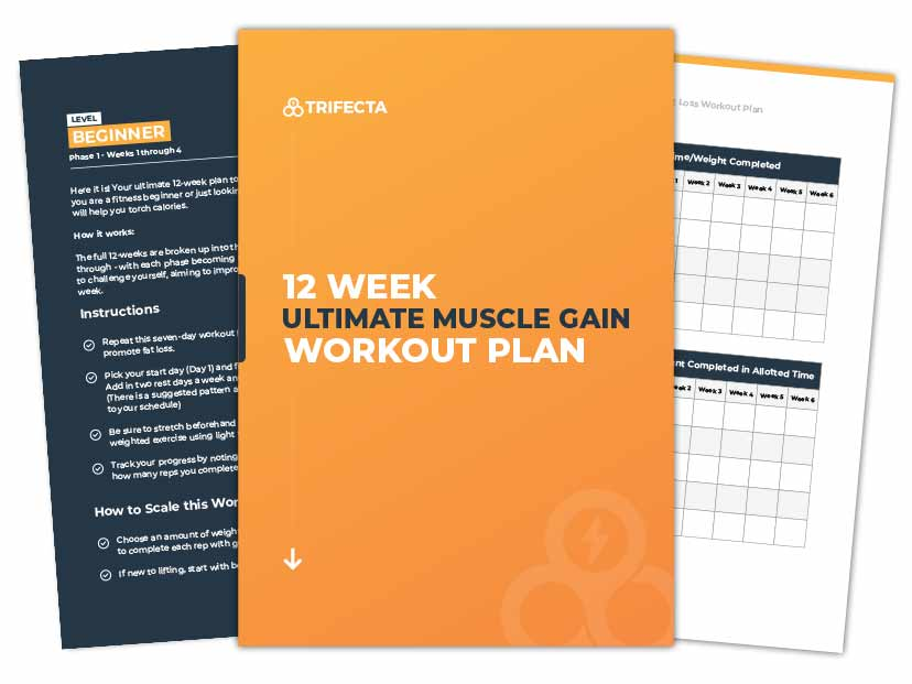 12-week-workout-plan-for-muscle-gain