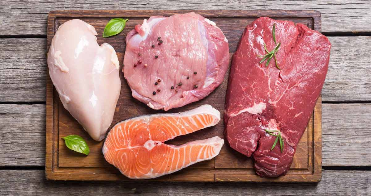 high protein foods to help you hit your macros