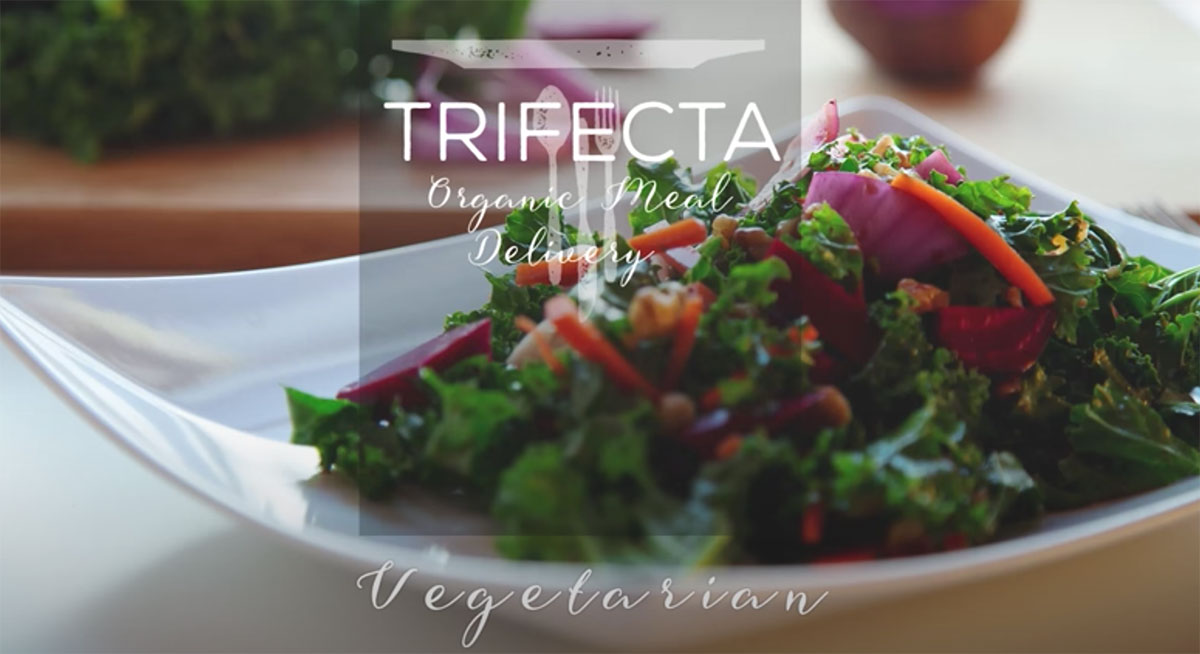 vegetarian meal delivery thumbnail