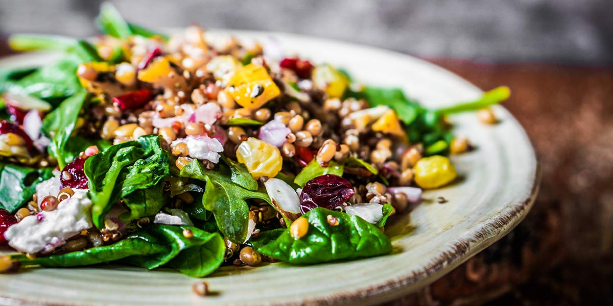Back to Basics: The Whole Food Plant Based Diet, Explained, grain bowl with spinach and dried fruit
